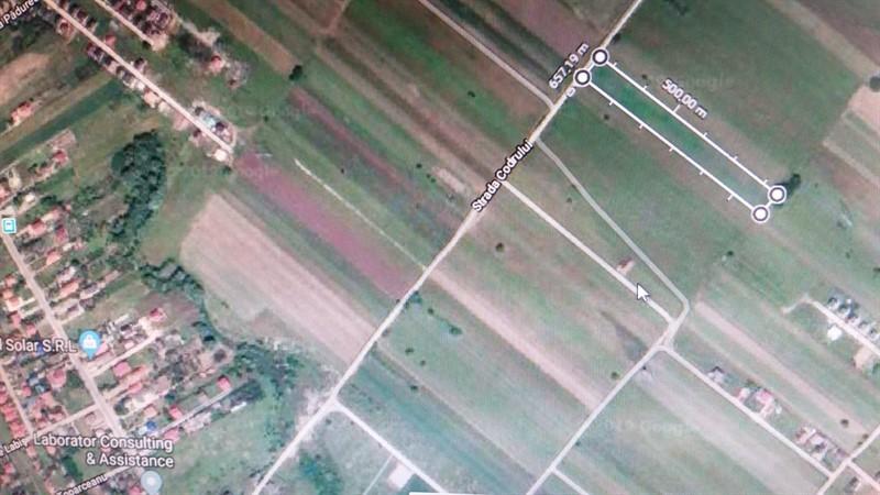 Teren Parcelabil 9901 mp, BERCENI-IF