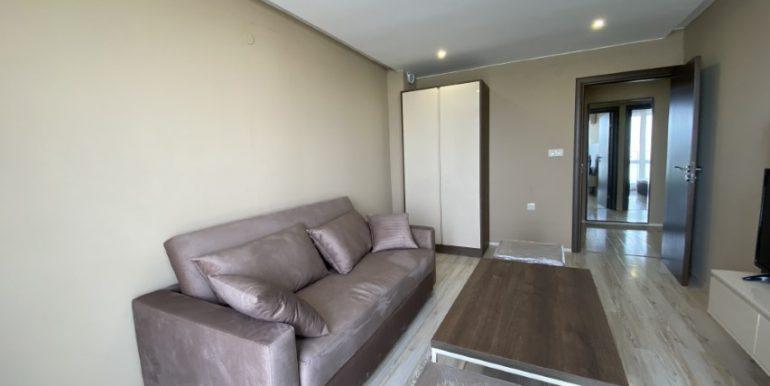living-sofa (2)